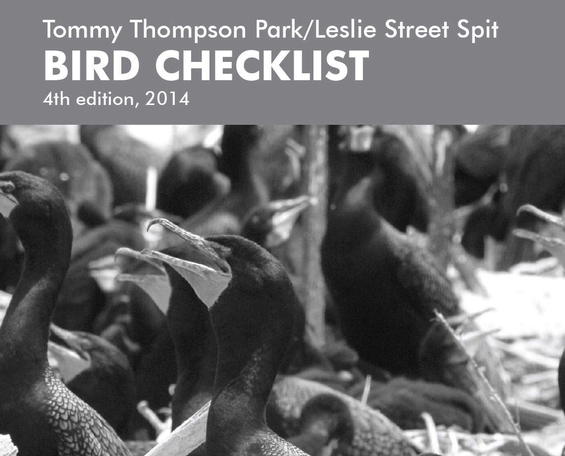 cover page of Tommy Thompson Park bird checklist