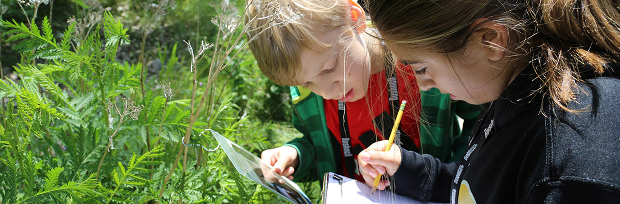 Children take part in outdoor education program during a school field trip at Tommy Thompson Park