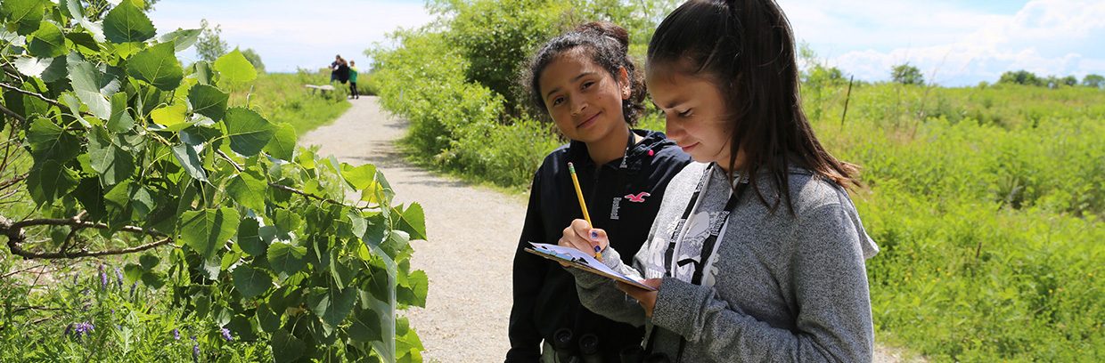 children take part in wildlife education program at Tommy Thompson Park