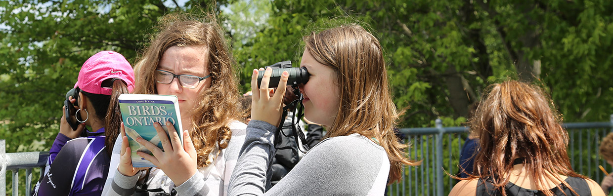 Students take part in Winged Migration program at Tommy Thompson Park, and learn about the bird migration through Toronto.