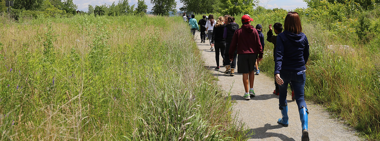 High school students explore the trails at Tommy Thompson Park.