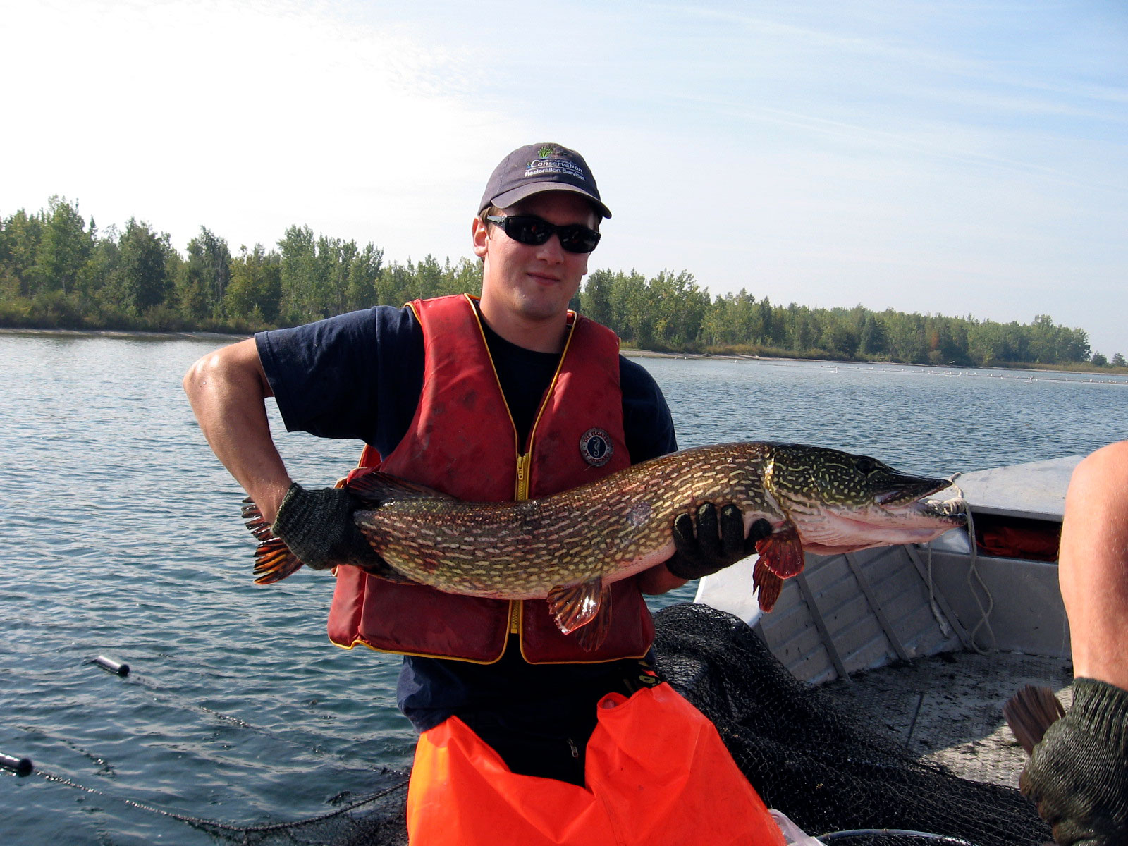 A TRCA staff person holding a large Northern Pike