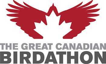 Great Canadian Birdathon logo