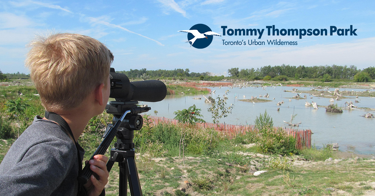 young birdwatcher at Tommy Thompson Park