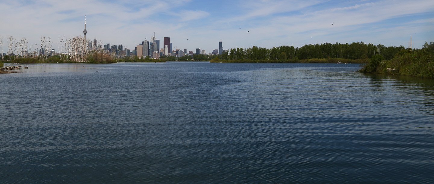 view of Toronto skyline from Tommy Thompson Park