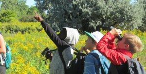 Young Birders' Club (9-12 y.o.) @ Tommy Thompson Park
