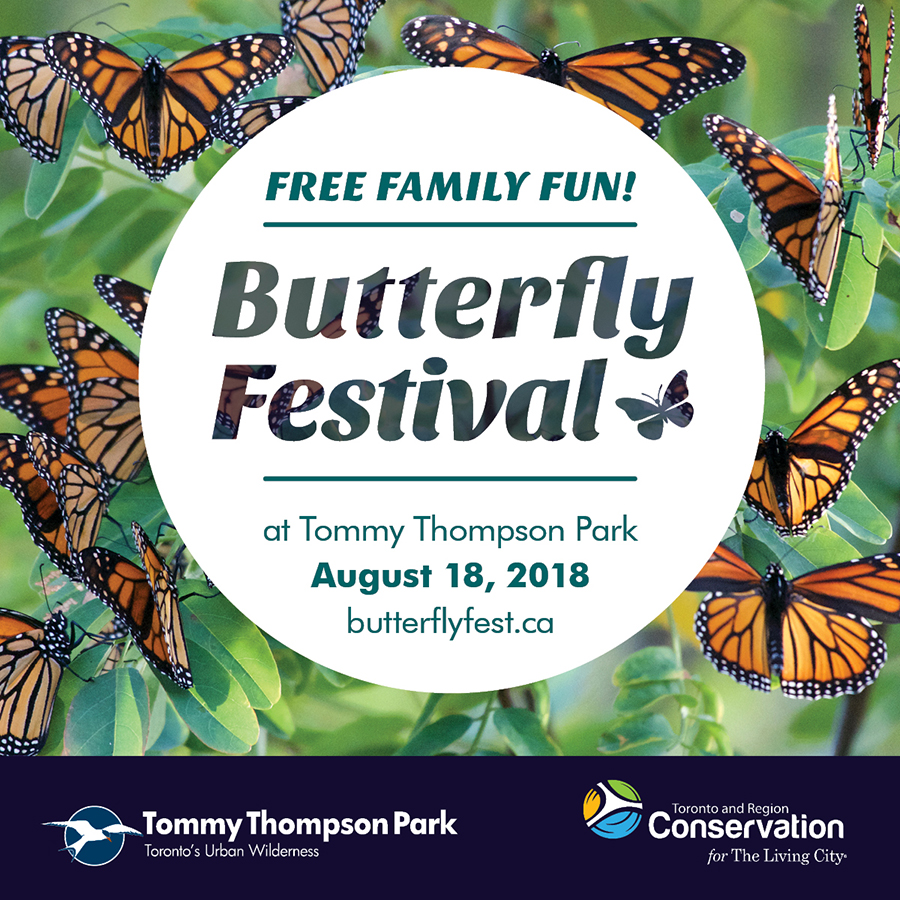 Tommy Thompson Park Butterfly Festival, August 18, 2018