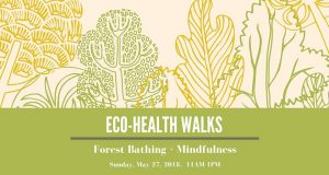 Eco-Health Walk- Urban Herbs @ Tommy Thompson Park | | |