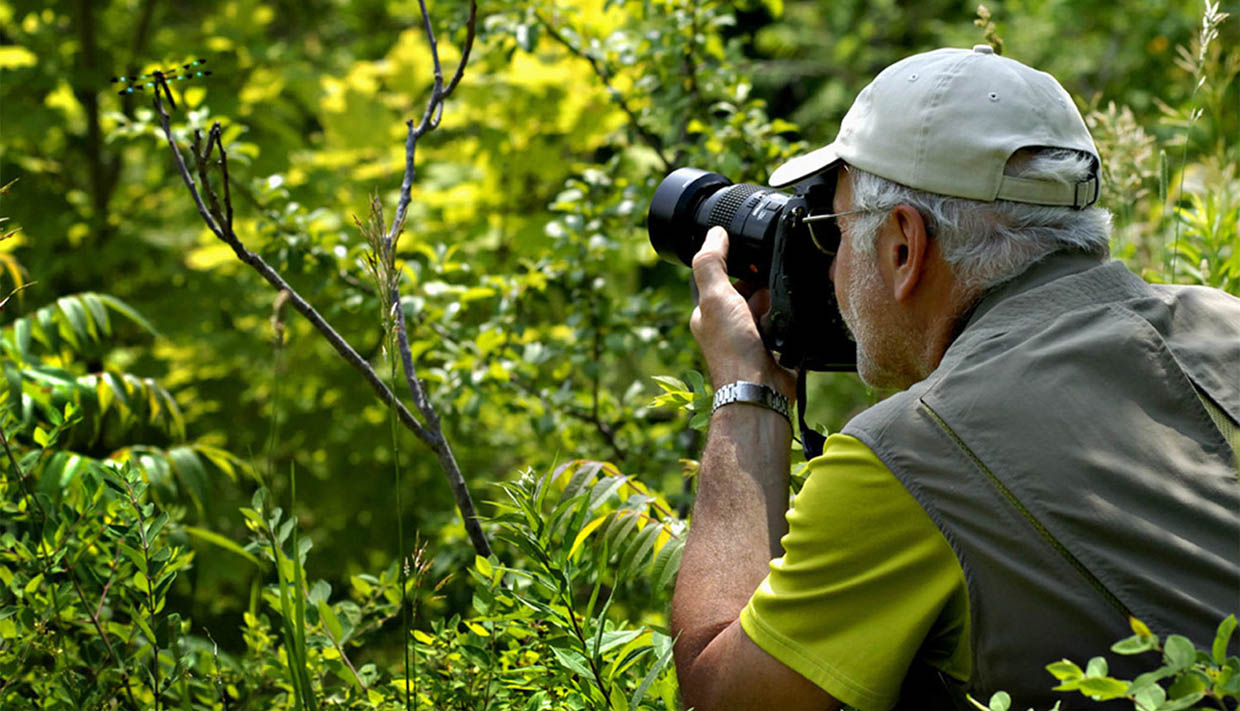 Macro Photography Workshop @ Tommy Thompson Park | | |