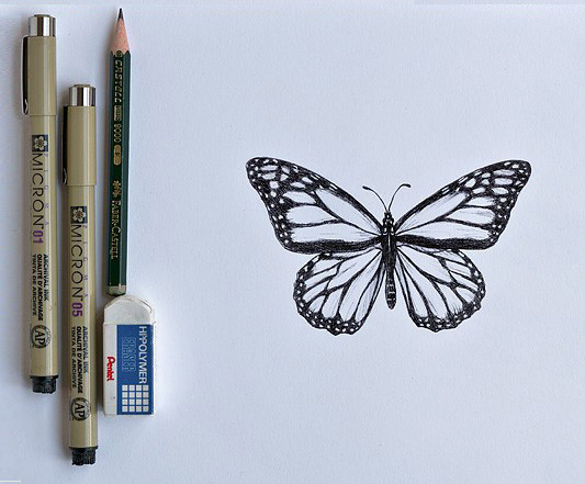 butterfly sketching tools