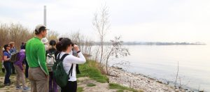 Birding for Beginners: A New World on  Your Doorstep @ Tommy Thompson Park