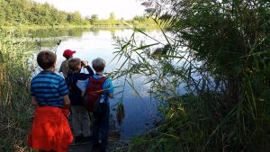 Nature Camp on The Spit (day) @ Tommy Thompson Park