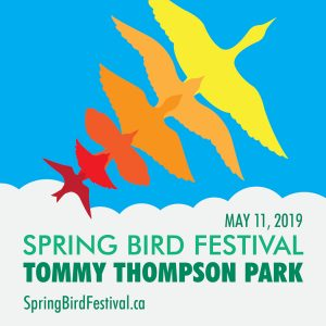 Spring Bird Festival @ Tommy Thompson Park