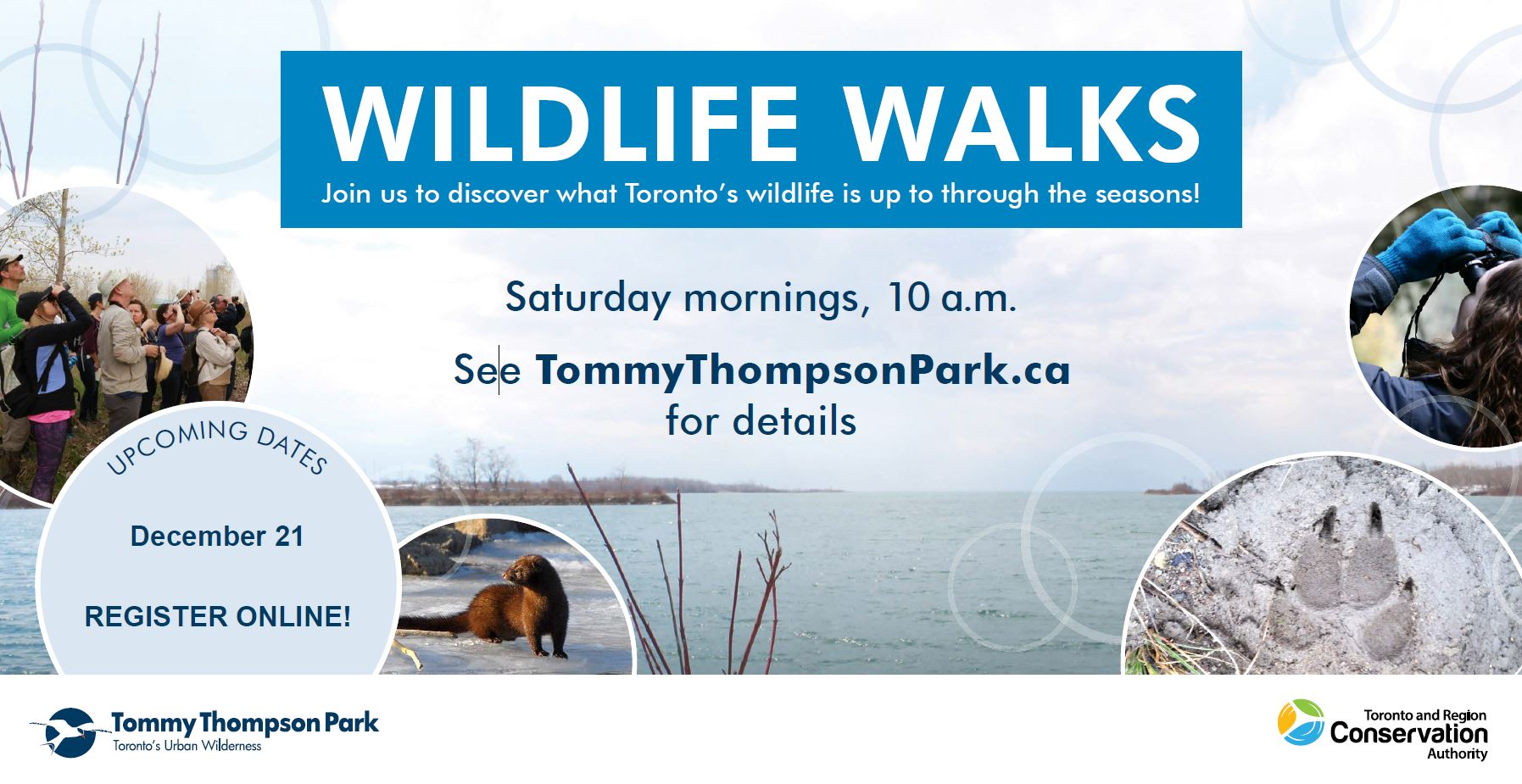 Tommy Thompson Park Wildlife Walks postcard