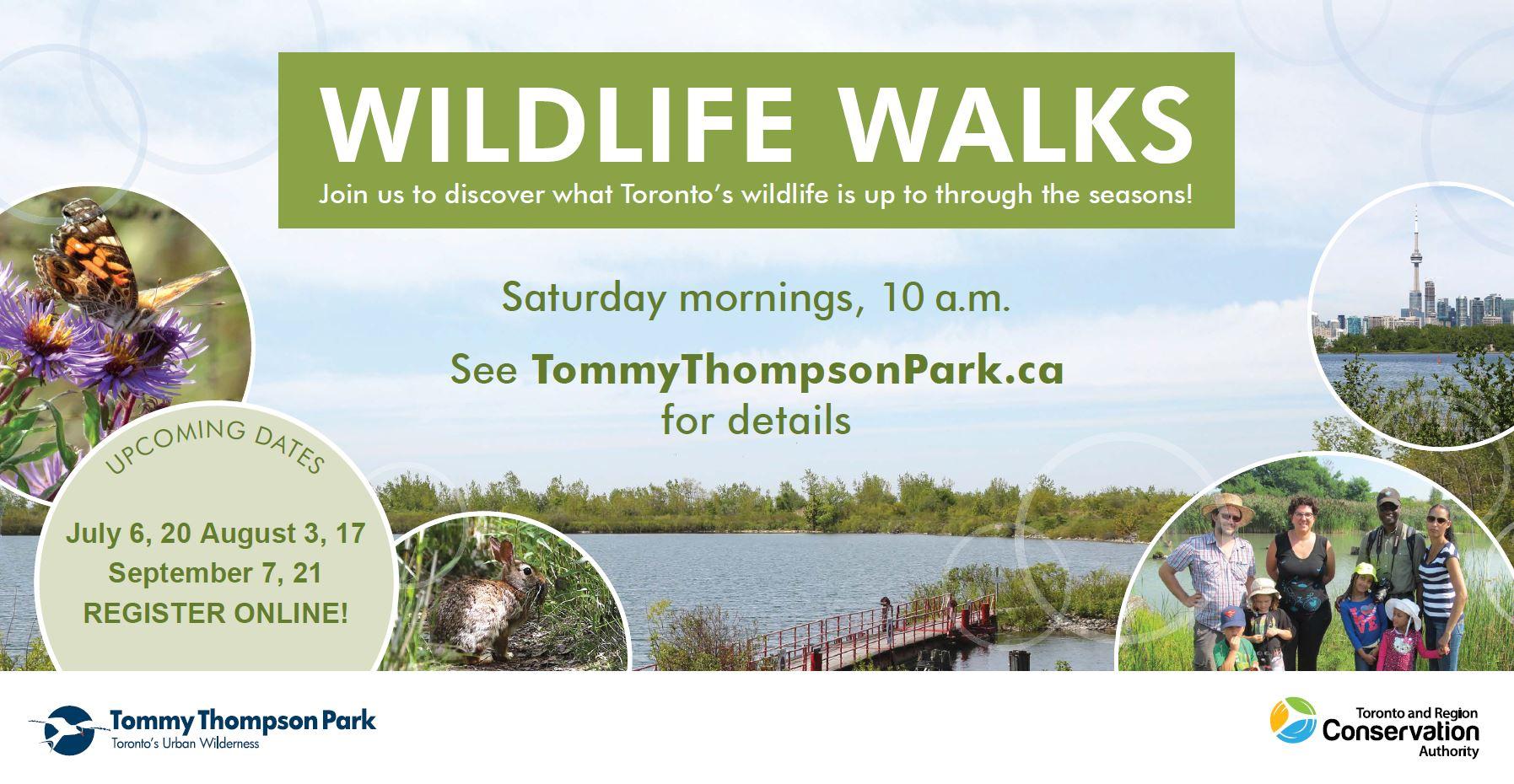 Tommy Thompson Park Wildlife Walks postcard