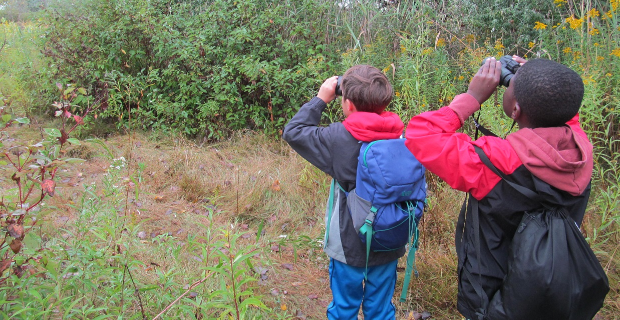 PA day campers use binoculars to look for birds at Tommy Thompson Park