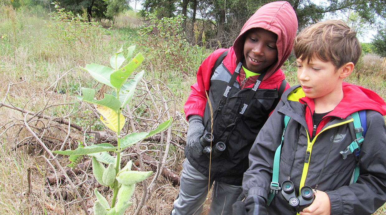 PA day campers investigate flora and fauna at Tommy Thompson Park
