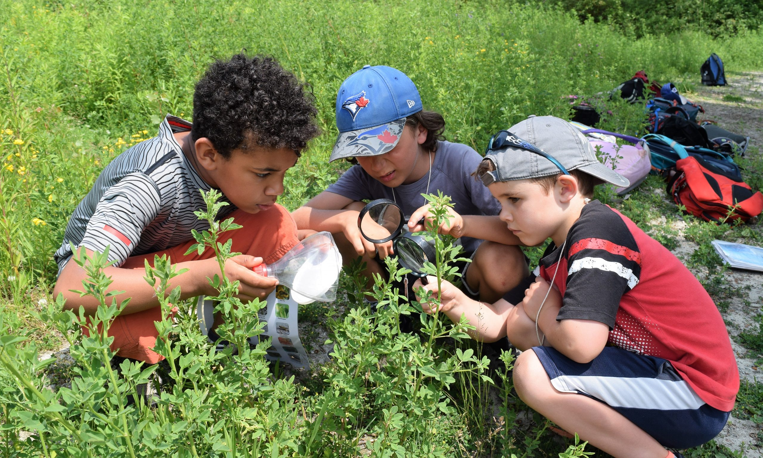 Nature on The Spit campers exploring for invertebrates (insects, and more!)