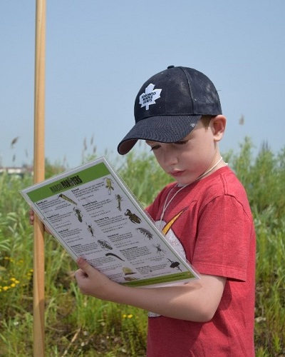 summer camper studies flora and fauna at Tommy Thompson Park