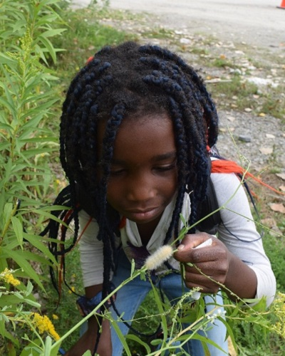 summer camper examines caterpillar at Tommy Thompson Park